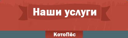 Ветклиника КотоПёс Запорожье | Услуги